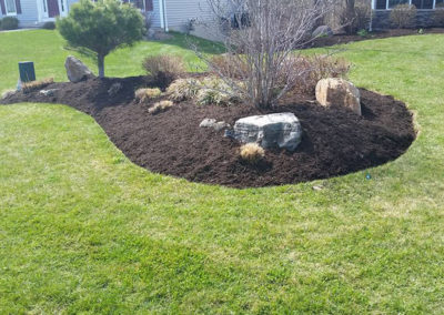 landscaping-planting-webster-penfield-ontario