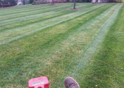 lawn-mowing-ontario-webster-penfield