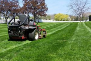 lawn mowing ontario webster penfield rochester-1